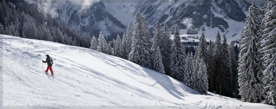 mitten in der Tiroler Berglandschaft